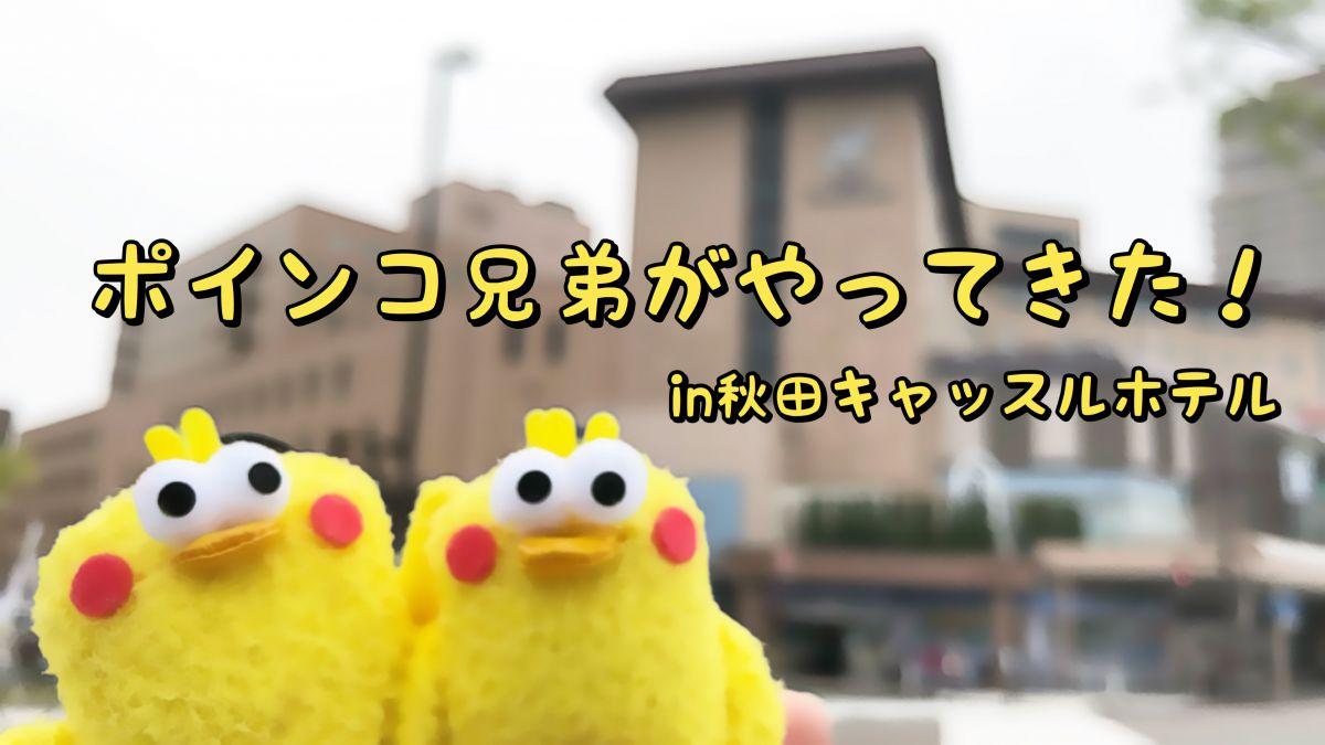 ポインコ兄弟がお散歩にやってきた!in秋田キャッスルホテルアイキャッチ
